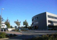 IILM University Global Study Program Semester Abroad Germany